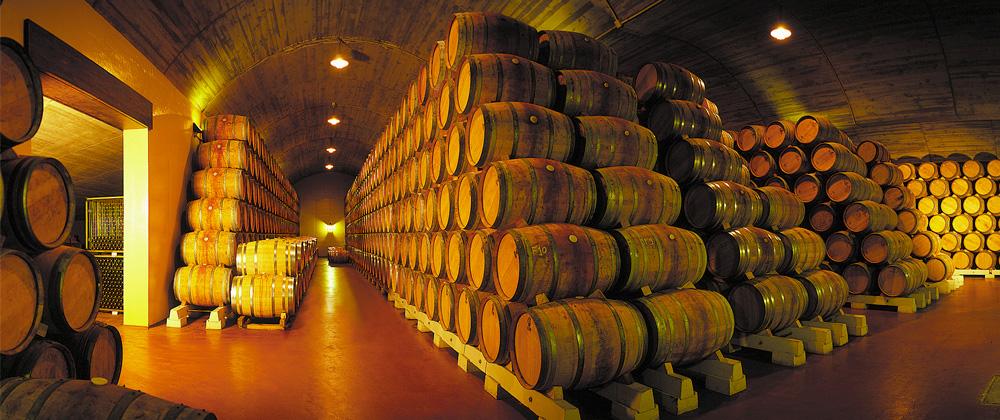 Wijnkelder Luis Canas